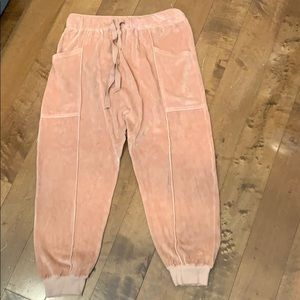 Free People Pants & Jumpsuits - NWOT FP In The Slick Of It Velour Harem Jogger